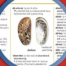 "close-up image of ""abalone"" photographic definition from Merriam-Webster Children's Dictionary"
