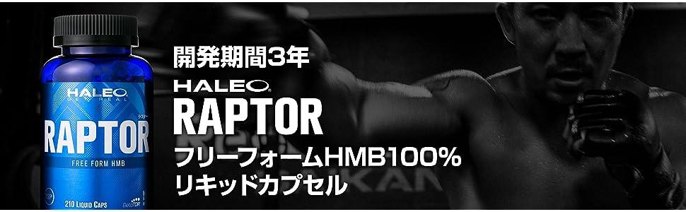 3500x1060_raptor.jpg