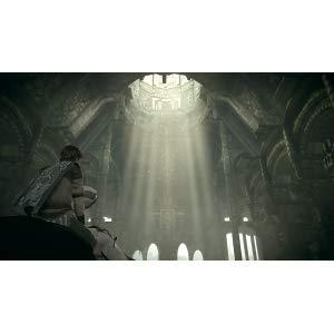 古えの地。天の声。死者の復活。 禁忌に踏み込み、巨像に挑む。