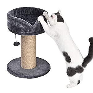 AmazonBasics Cat Scratching Post with Platform Bed