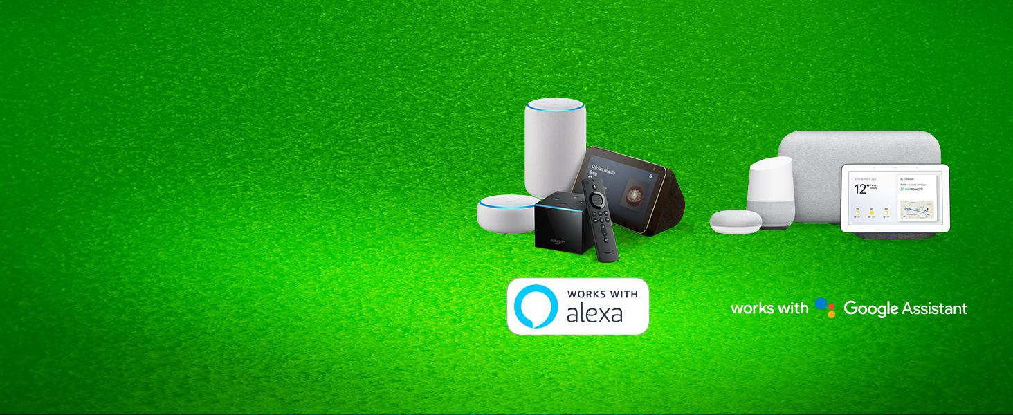 Leviton DW3HL-1BW Works with Alexa 10 Piece