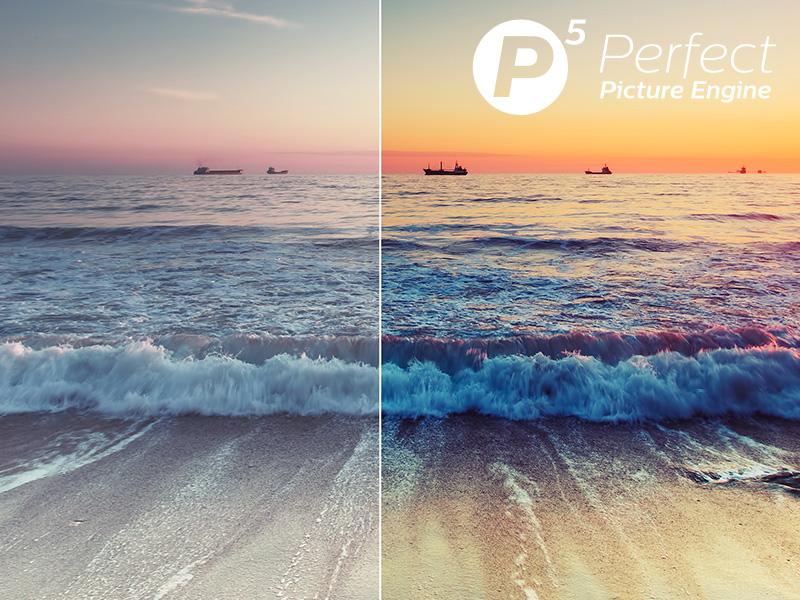 P5 Picture Processor