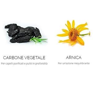 Alama Professional CARBON Shampoo Riequilibrante per Capelli Spenti e Cute Stressata