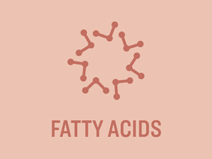 Revly omega fatty acid supplements