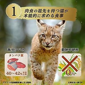 Nutro_CAT_A001_WildRecipe
