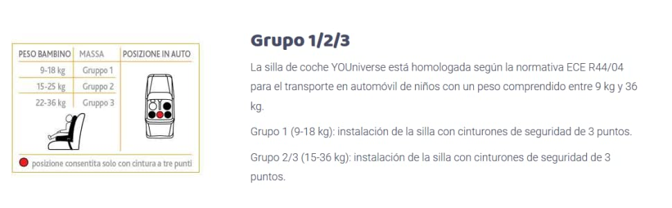 Chicco YOUniverse, Silla de coche grupo 1/2/3, negro: Amazon.es: Bebé