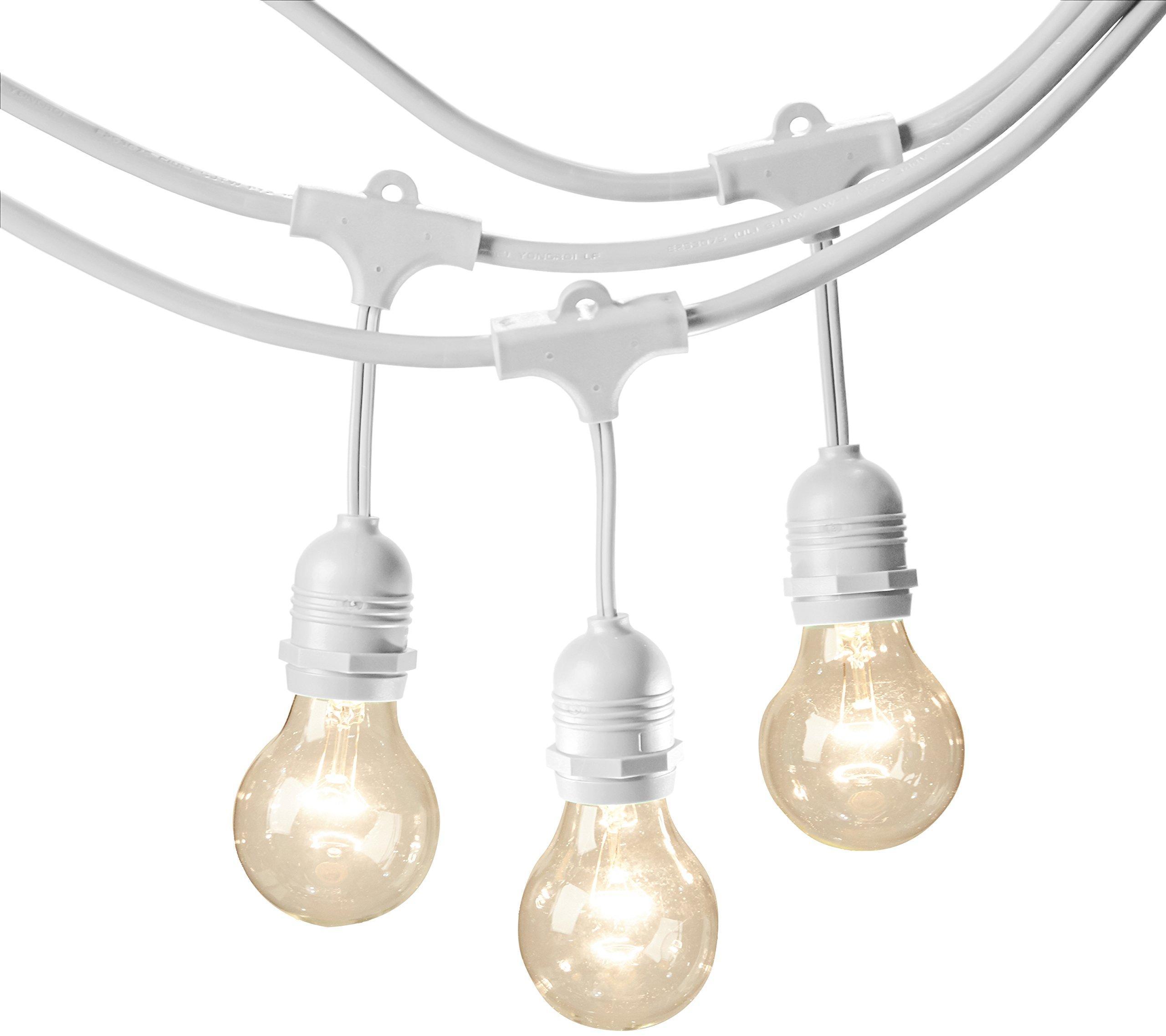 amazonbasics weatherproof outdoor patio string lights g60 bulb white 48 foot. Black Bedroom Furniture Sets. Home Design Ideas