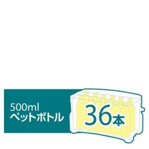 500mlペットボトル36本イメージ