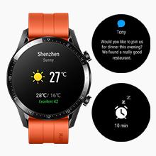 Huawei LTN-B19-BRN GT 2 Smart Watch