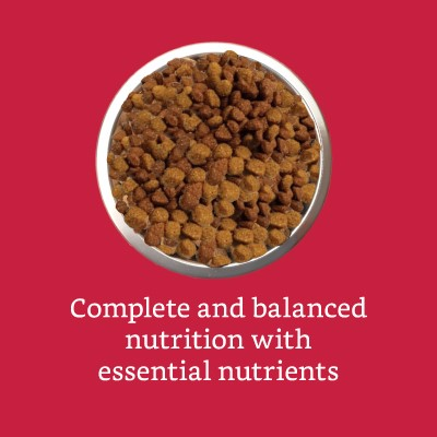 Complete & balanced nutrition with essential nutrients