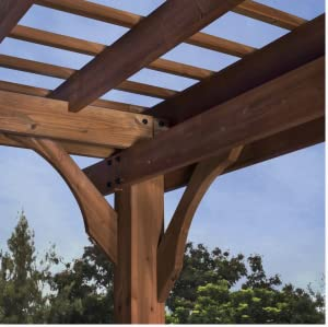 Amazon.com: Backyard Discovery Cedar Pergola, Marrón: Jardín ...