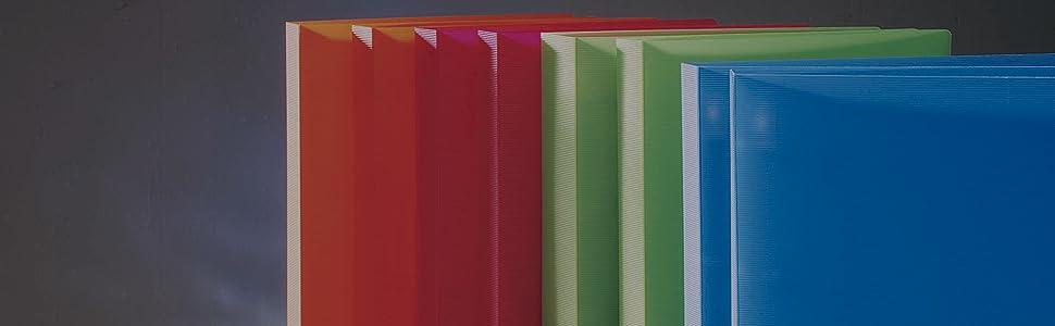 Pardo 102000 - Pack de 10 fundas para colección variada, 20 alojamientos: Amazon.es: Oficina y papelería