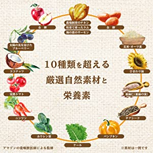 10 nutrition