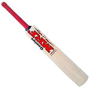 cricket, cricket bat