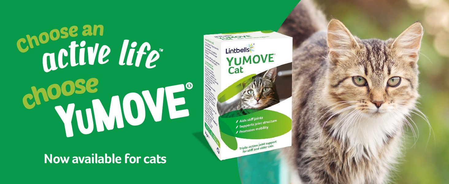 YuMOVE for cats