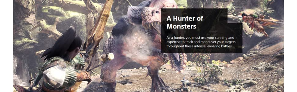 Monster Hunter: World: PlayStation 4: Computer and Video