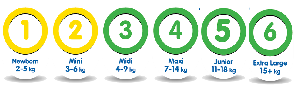 Molfix Size Chart