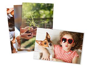 Prime Photos Photo Prints Glossy/Matte Pearl Paper Type Prints Print Images