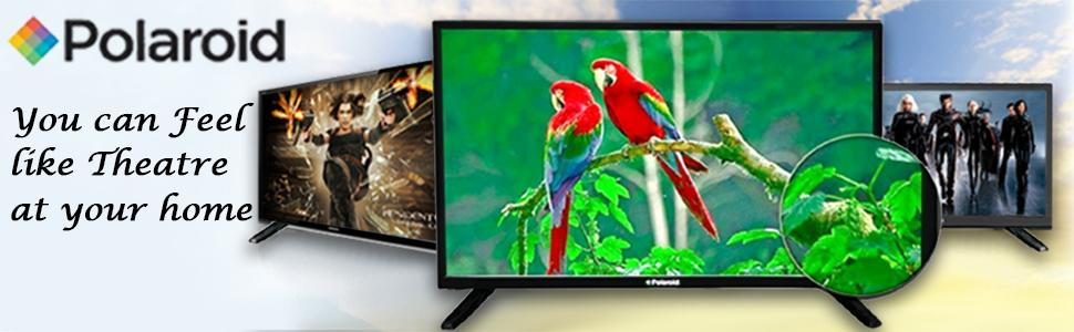 Polaroid 496 cm ledp019a hd ready led tv amazon electronics from the manufacturer fandeluxe Images