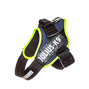 Julius-K9 Mini-Mini, 40-53 cm, Negro: Amazon.es: Productos para ...