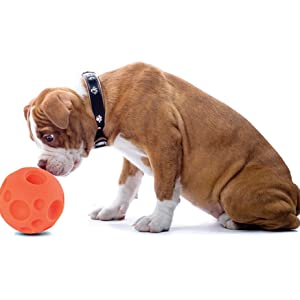 Red Tricky Treat Ball for Toss and Fetch Play Pack of 1