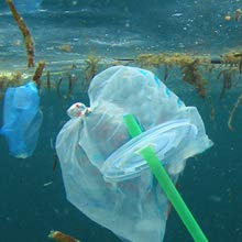 plastic in oceans;clean oceans
