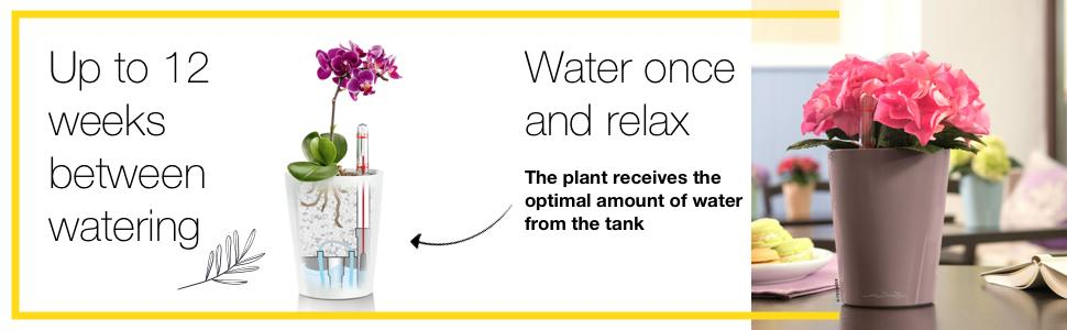 Mini-Deltini flower pot