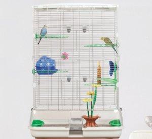 Vision Jaula Modelo S01, 45,5 x 35,5 x 51 cm: Amazon.es: Productos ...