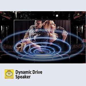 Dynamic Drive Speaker