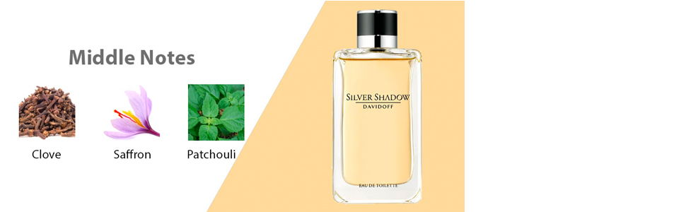 Silver Shadow by Davidoff for Men