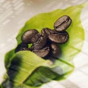 Illy Classic Roast Coffee Beans Medium