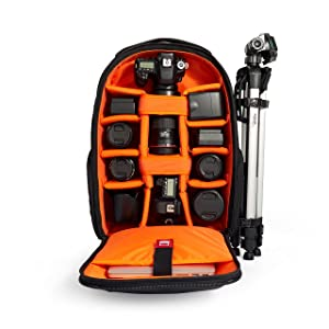 Image result for AmazonBasics Convertible Rolling Camera Backpack
