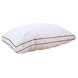 Slowly Rebounding Memory Hotel Pillow By Hours