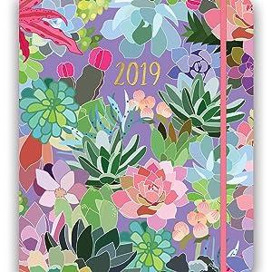 Orange Circle Studio 2019 Hidden Spiral Agenda, August 2018 - December 2019, Succulent Paradise