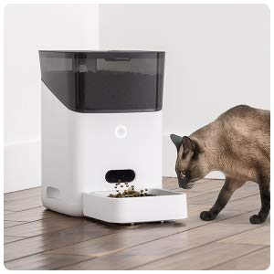 automatic dog cat pet feeder