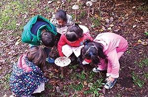 OTRA EDUCACIÓN YA ES POSIBLE: UNA INTRODUCCIÓN A LAS