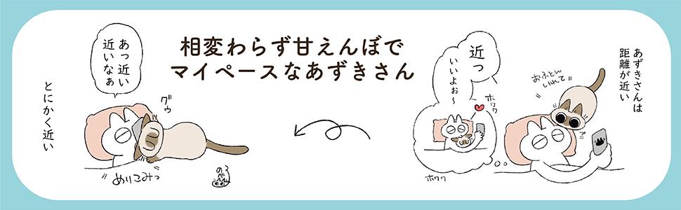 もっと!! シャム猫あずきさんは世界の中心