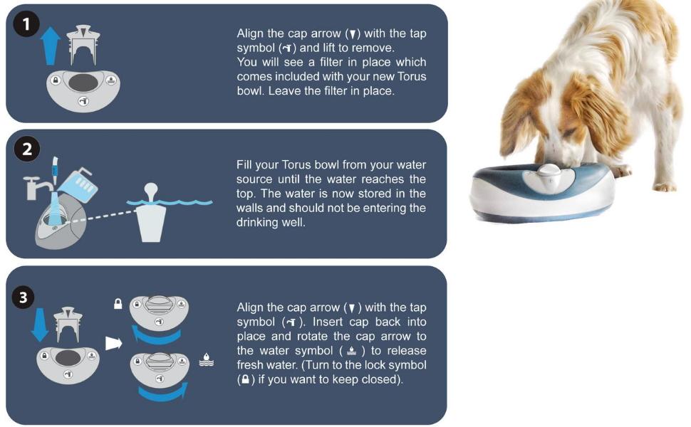 Torus pet change filters