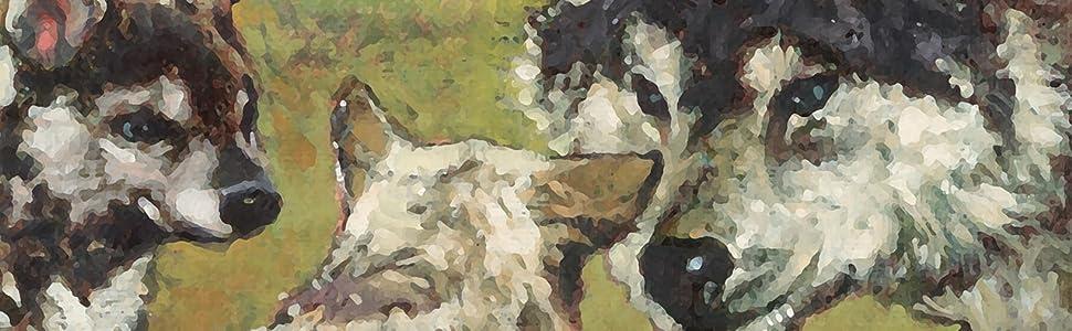 Taste of the Wild Canine High Prairie Puppy Bisonte - 13000 gr ...