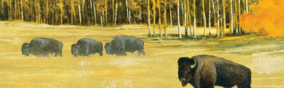 Taste of the Wild Canine High Prairie Bisonte - 13000 gr: Amazon ...