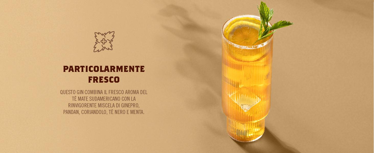 Particolarmente fresco: Questo gin combina il fresco aroma del tè mate sudamericano con la