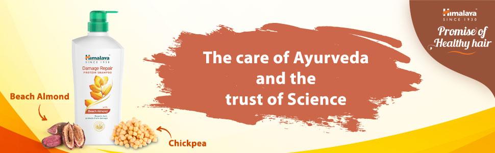 Ayurveda banner