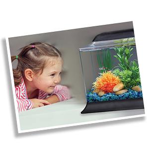 water conditioner aquarium water test kit freshwater test kit nitrate test ph test kit saltwater