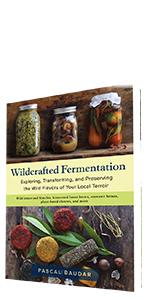 fermentation, noma, redzepi, chang, barber, pollan, vegetables, kraut, slaw, microbes, koji