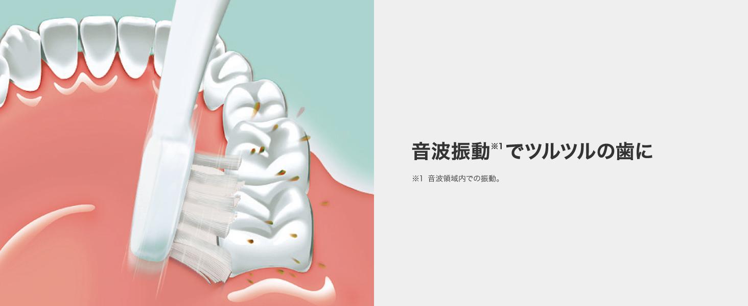 ポケットドルツ ドルツ 電動歯ブラシ 電動ハブラシ ランチ磨き ポケドル 持ち運び 携帯用 ロングサイズ 握りやすい しっかり磨ける 化粧ポーチ 旅行用 電動はぶらし 音波振動 磨き残し 歯周ポケット