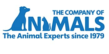 the company of animals pet corrector dog training