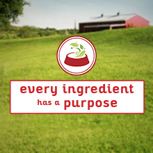 Every ingredient has a purpose