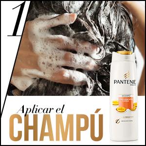 Empezar con el champú Pantene Pro-V Prevención Caída: aplicar en el pelo húmedo de la raíz a las puntas; aclarar y repetir si se desea.