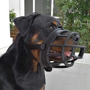 ILEPARK Bozal de Nylon para Perros Peque/ños Medianos Grandes Bozal para Perro Ajustable para Evitar Que Muerda Mastique y Ladre S,Azul