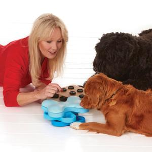 Pet Supplies : Nina Ottosson Dog Smart Beginner Dog Puzzle